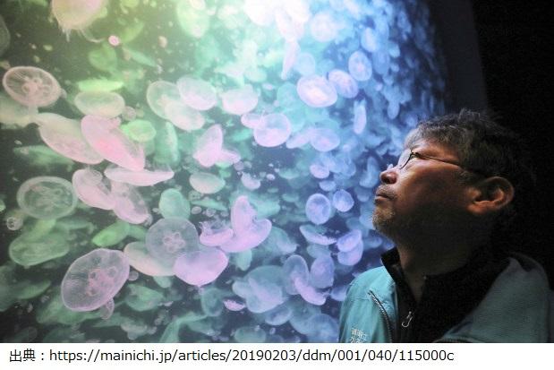 奥泉和也さんは世界一のクラゲ水族館の館長 世界的なクラゲの飼育者になった彼の功績と彼が作ったクラゲをインスタで見てみると