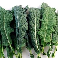 ルテイン,野菜,含有量,1位,ケール