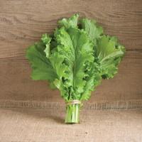 ルテイン,野菜,含有量,9位,,マスタードグリーン