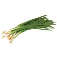 ルテイン,野菜,含有量,17位,ねぎ