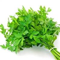 ルテイン,野菜,含有量,7位,パセリ
