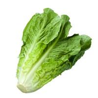 ルテイン,野菜,含有量,14位,ロメインレタス