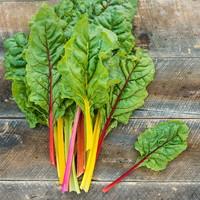 ルテイン,野菜,含有量,5位,スイスチャード